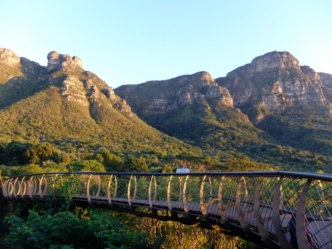 Castle Rocks looms large above the Tree Canopy Walkway