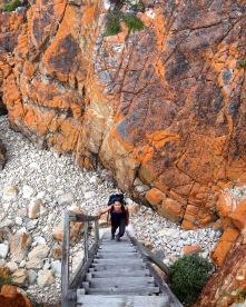 Harkerville Coast Hiking Trail