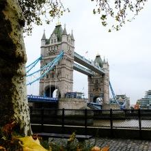 Views of Tower Bridge, London