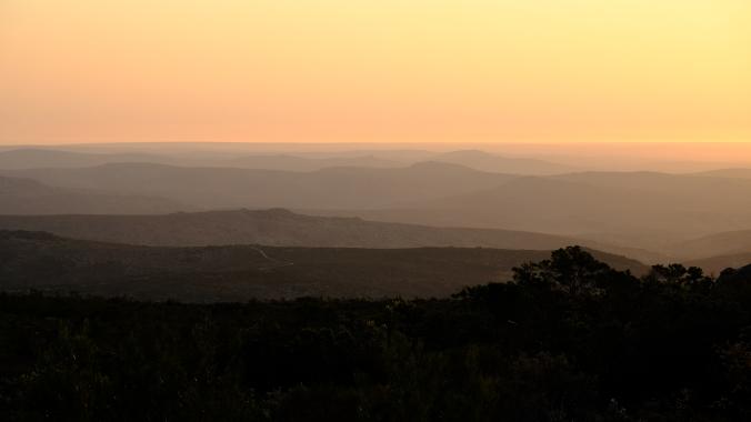 Namaqua National Park - Wildflowers - Justin Hawthorne 10