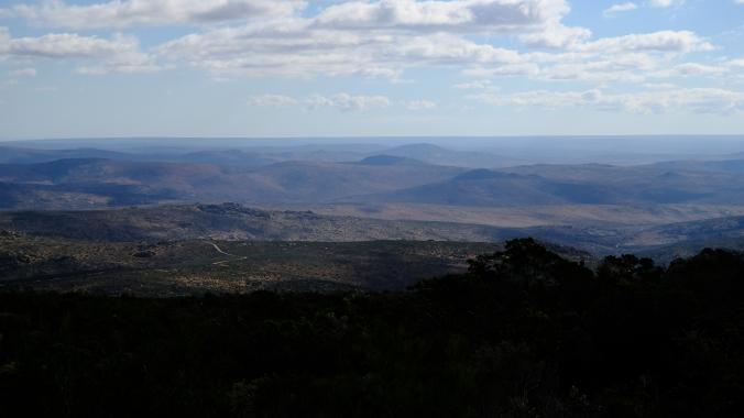 Namaqua National Park - Wildflowers - Justin Hawthorne 31