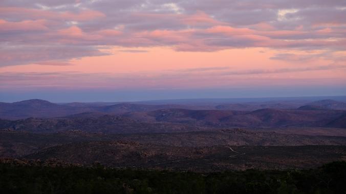 Namaqua National Park - Wildflowers - Justin Hawthorne 34
