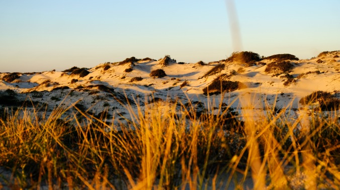 Rocherpan Nature Reserve - Winter Weekend - Justin Hawthorne 12