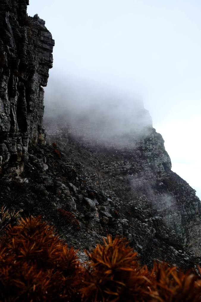 #12ApostlesFire - Justin Hawthorne - Table Mountain - 1 Month Update 13