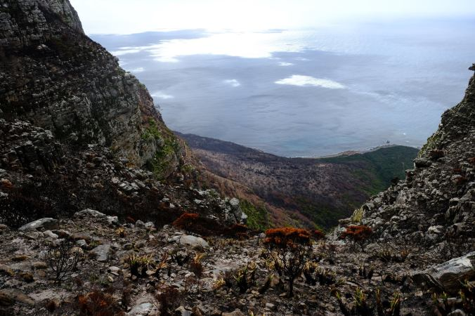 #12ApostlesFire - Justin Hawthorne - Table Mountain - 1 Month Update 16