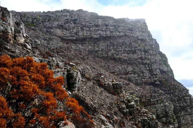 #12ApostlesFire - Justin Hawthorne - Table Mountain - 1 Month Update 17