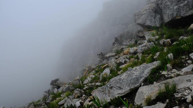 #12ApostlesFire - Justin Hawthorne - Table Mountain - 8 Month Update 12