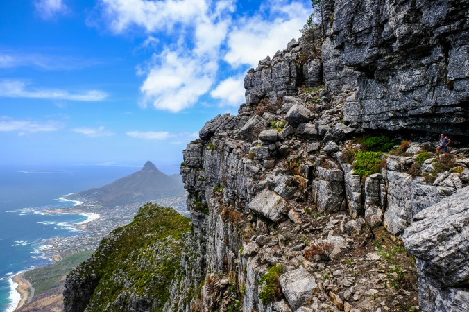 Looking at the Fynbos recovery of the 12 Apostles Fire on