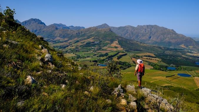 Simonsberg Hike - Stellenbosch - Justin Hawthorne 14