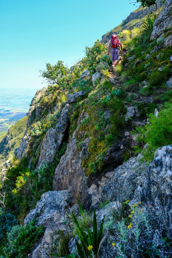 Simonsberg Hike - Stellenbosch - Justin Hawthorne 19