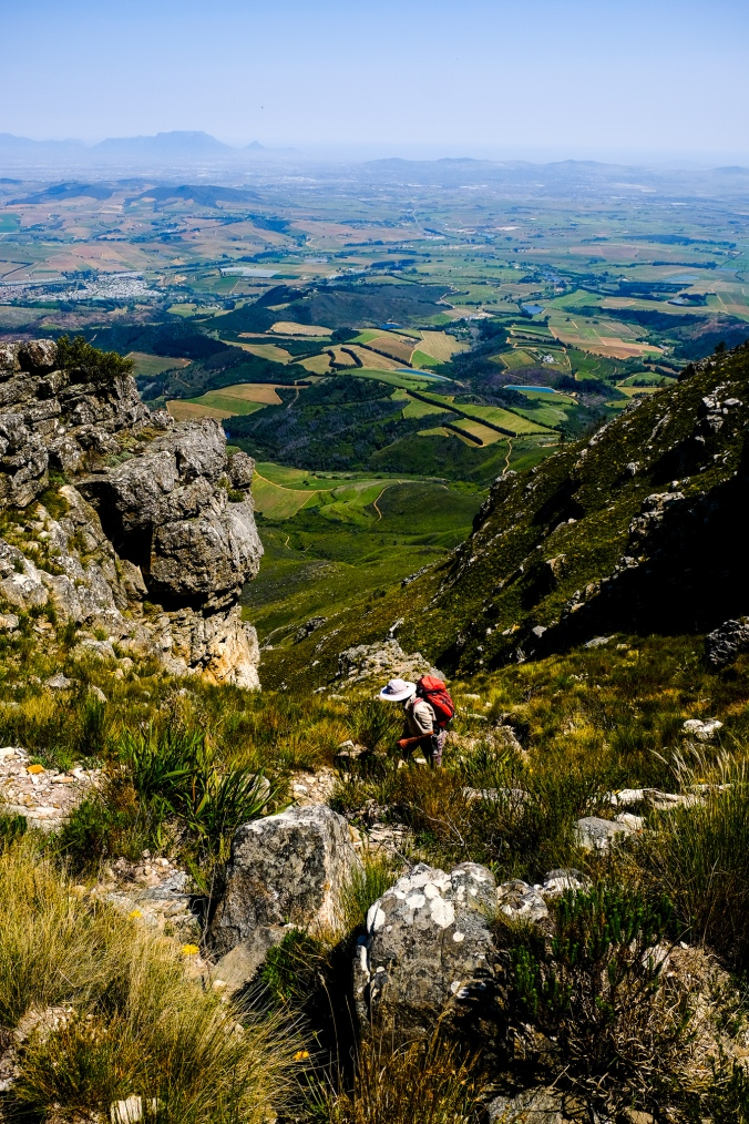 Simonsberg Hike - Stellenbosch - Justin Hawthorne 26