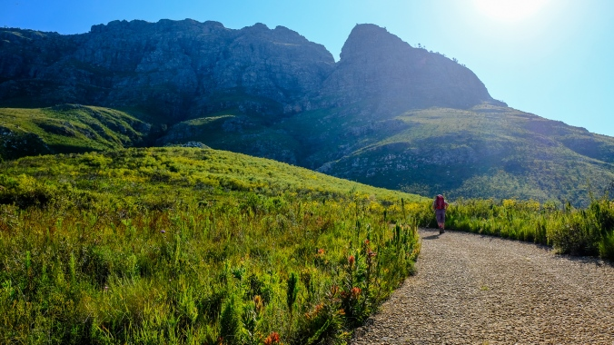 Simonsberg Hike - Stellenbosch - Justin Hawthorne 3