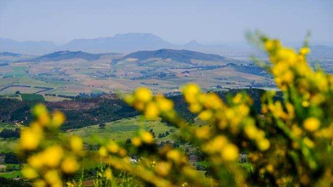 Simonsberg Hike - Stellenbosch - Justin Hawthorne 9